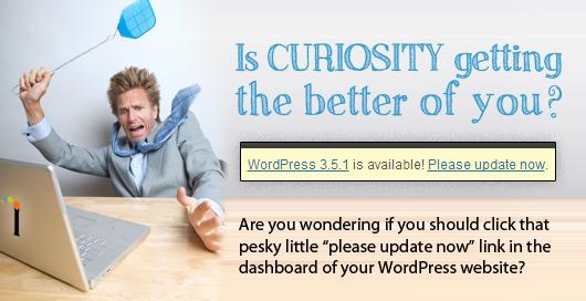 newsletter-wordpress-update
